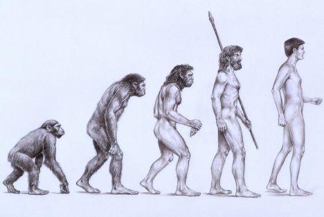 [صورة مرفقة: evolution-2010-02-25_l.jpg]